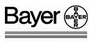 bayer_logo_grey